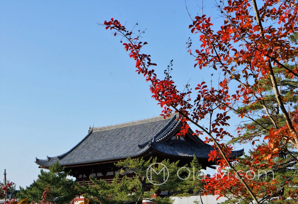 Nara - ŚwiątynięTōdai-ji zobaczyłam tylko z zewnątrz...