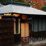 Nara - dom w tradycyjnym japońskim stylu