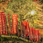 Nara - okolice świątyni Kōfukuji