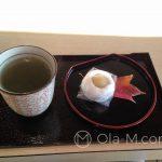 Matcha i wagashi w ogrodzie Rikugi-en