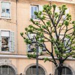 Marsylia - Stare Miasto między Starym Portem i Operą - jeden z uroczych placyków na starym mieście
