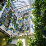 Malaga - Bodega El Pimpi - pięknie ozdobiony wewnętrzy dziedziniec