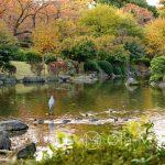 Tokio - Sumida Park