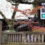 Tokio - dzielnica Ueno, widok na wejście do jednej z licznych małych świątyń