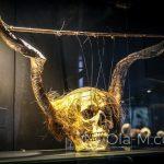 Malaga - Interaktywne Muzeum Muzyki - jeden z pierwszych instrumentów muzycznych, używany przez szamanów do celów rytualnych