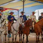 Andaluzja - Fiesta - Feria de Ronda - konie andaluzyjskie są ponoć łagodne, inteligentne i świetnie nadają sie do tresury
