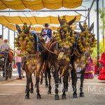 Andaluzja - Fiesta - Feria de Ronda - odświetnie udekorowany zaprząg